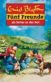 Fünf Freunde als Retter in der Not / Fünf Freunde Bd.11