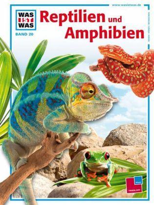 Reptilien und Amphibien - Niekisch, Manfred