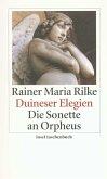 Duineser Elegien / Die Sonette an Orpheus
