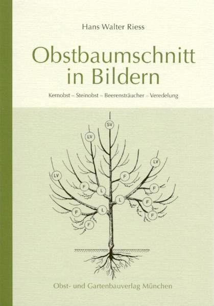 Obstbaumschnitt in Bildern - Riess, Hans W.