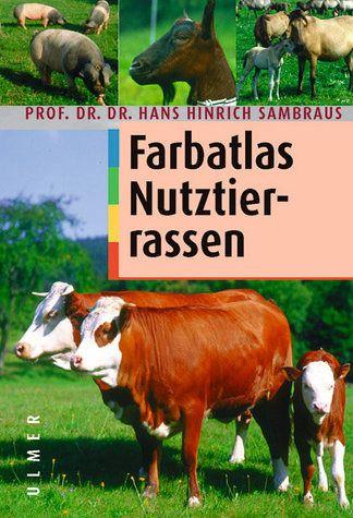 book Krankheitsvorstellungen in Deutschland: Das Beispiel