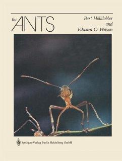 The Ants - Hölldobler, Bert; Wilson, Edward O.