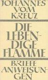 Die lebendige Flamme; Die Briefe und die kleinen Schriften / Sämtliche Werke Bd.4