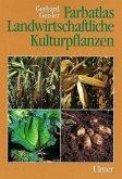 Farbatlas Landwirtschaftliche Kulturpflanzen
