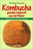 Kombucha: Geballte Heilkraft der Natur