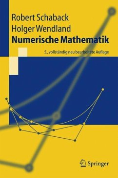Numerische Mathematik - Schaback, Robert; Werner, Helmut