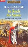 Im Reich der Spinne / Dunkelelfen-Saga Bd.2