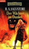 Der Wächter im Dunkel / Dunkelelfen-Saga Bd.3