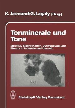 Tonminerale und Tone