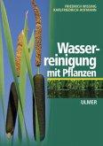 Wasserreinigung mit Pflanzen