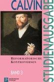Reformatorische Kontroversen