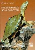 Faszinierende Schildkröten. Sumpfschildkröten