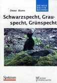 Schwarzspecht, Grauspecht, Grünspecht