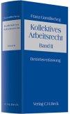 Kollektives Arbeitsrecht 2. Ein Lehrbuch