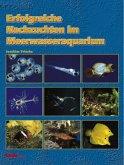Erfolgreiche Nachzuchten im Meerwasseraquarium