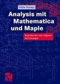 Analysis mit Mathematica und Maple