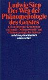 Der Weg der ' Phänomenologie des Geistes'