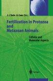 Fertilization in Protozoa and Metazoan Animals