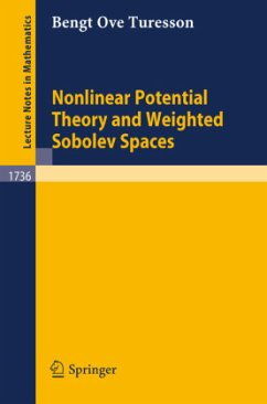 Nonlinear Potential Theory and Weighted Sobolev Spaces - Turesson, Bengt O.
