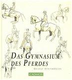 Das Gymnasium des Pferdes