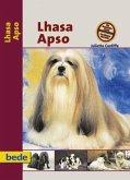 PraxisRatgeber Lhasa Apso