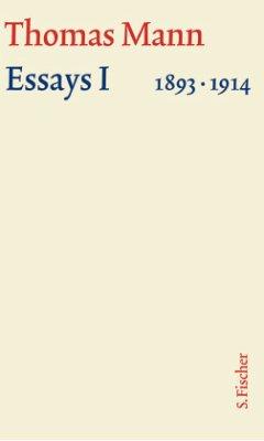 Essays 01. Große kommentierte Frankfurter Ausga...