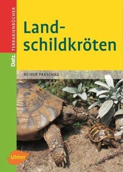 Landschildkröten - Praschag, Reiner