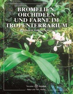 Bromelien, Orchideen und Farne im Tropenterrarium - Schwarz, Benjamin;Schwarz, Wolfgang
