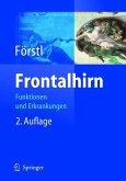 Frontalhirn