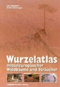 Wurzelatlas mitteleuropäischer Waldbäume und Sträucher - Kutschera, Lore; Lichtenegger, Erwin