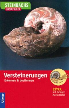 Steinbachs Naturführer. Versteinerungen - Lichter, Gerhard