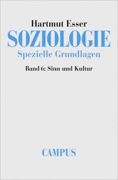 Soziologie. Spezielle Grundlagen 6