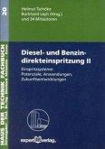 Diesel- und Benzindirekteinspritzung, m. CD-ROM