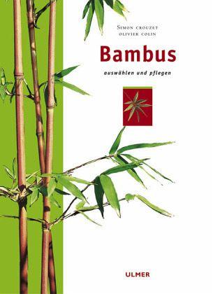 bambus pflanzen g nstig kaufen. Black Bedroom Furniture Sets. Home Design Ideas