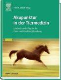 Akupunktur in der Tiermedizin