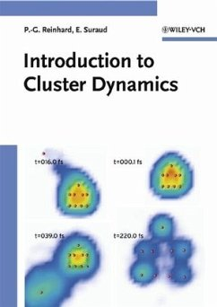 Introduction to Cluster Dynamics - Reinhard, Paul-Gerhard; Suraud, Eric