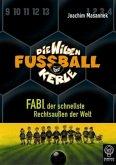 Fabi, der schnellste Rechtsaußen der Welt / Die Wilden Fußballkerle Bd.8