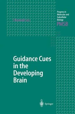 Guidance Cues in the Developing Brain - Kostovic, Ivica (ed.)