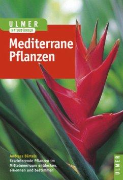Pflanzen des Mittelmeerraumes - Bärtels, Andreas