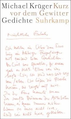 Kurz vor dem Gewitter - Krüger, Michael