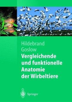 Vergleichende und funktionelle Anatomie der Wirbeltiere - Hildebrand, Milton; Goslow, George E.