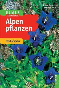 Alpenpflanzen - Muer, Thomas; Angerer, Oskar