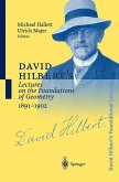 David Hilbert's Lectures on the Foundations of Geometry 1891-1902