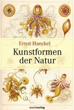Kunstformen der Natur - Haeckel, Ernst