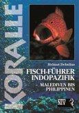 Koralle - Fisch-Führer Indopazifik