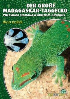 Der Große Madagaskar Taggecko - Kober, Ingo