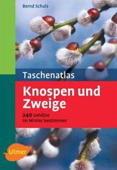 Taschenatlas Knospen und Zweige., 270 Gehölze nach Farbzeichnungen bestimmen. - Schulz, Bernd