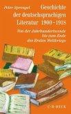 Geschichte der deutschsprachigen Literatur 1900-1918 / Geschichte der deutschen Literatur von den Anfängen bis zur Gegenwart Bd.9/2