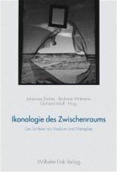Ikonologie des Zwischenraums - Endres, Johannes / Wittmann, Barbara / Wofl, Gerhard (Hgg.)