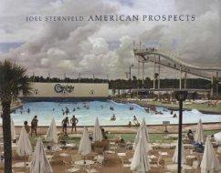 American Prospects - Sternfeld, Joel